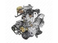 Двигатель УМЗ (Газель Бизнес Евро-4) с поликл. рем. привода агрег. (с копрессором sd5) (42164.1000402-71)